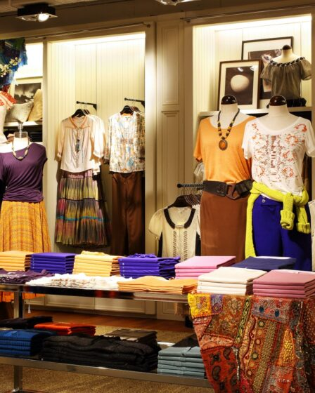 Expert Ladies Clothing Retailers Have Accepted This Best Business – Reasons