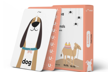 Flashcards For Learning